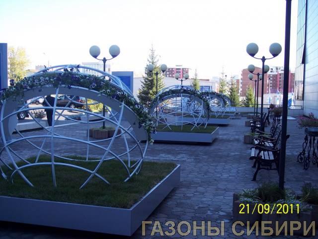 Байкальский Экономический Форум1